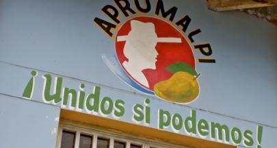 秘魯公平貿易芒果農,保存傳統技術耕耘土地永續價值