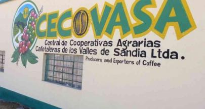 秘魯CECOVASA 六年的冠軍代表豆