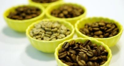 咖啡赭麴毒素的迷思─生豆才是最主要的來源