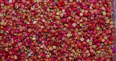響應聯合國藜麥年,生態綠推出公平貿易藜麥可可粉