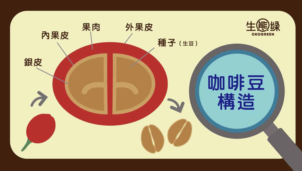 咖啡豆-水洗日曬3.jpg