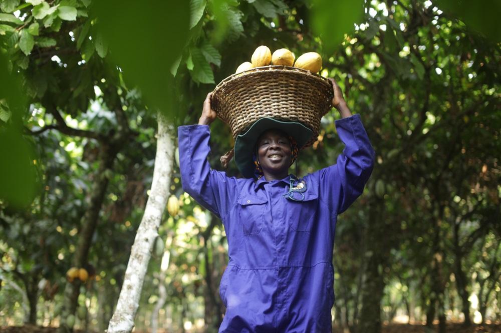 African Farmers_0.jpg